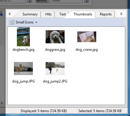 thumbnails 7 FileLocator Pro 6.0.1228 (x86/x64) full + serial 1 link